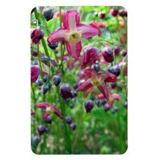 Epimedium Flowers premiumfleximagnet