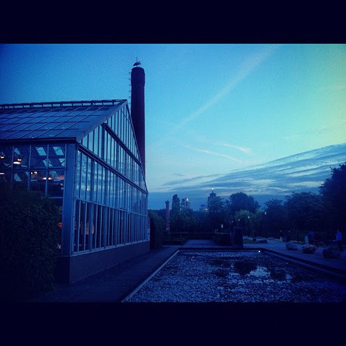 Netherland skies.