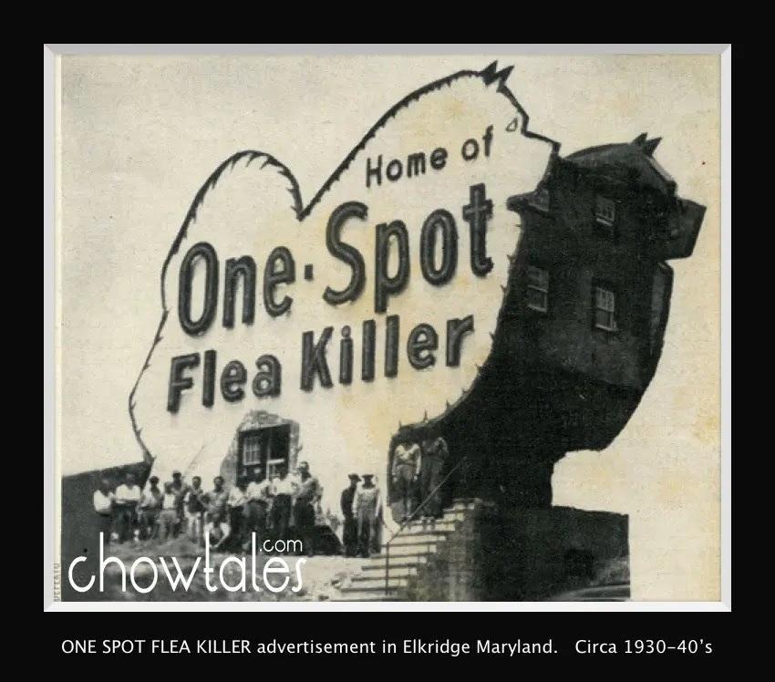 Indoor Flea Spray Lowe's | Best Flea Spray