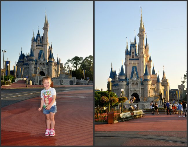 Princess and the Castle