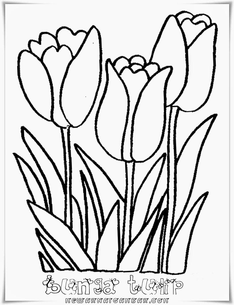 Gambar Sketsa Bunga Matahari Mudah Kata Kata