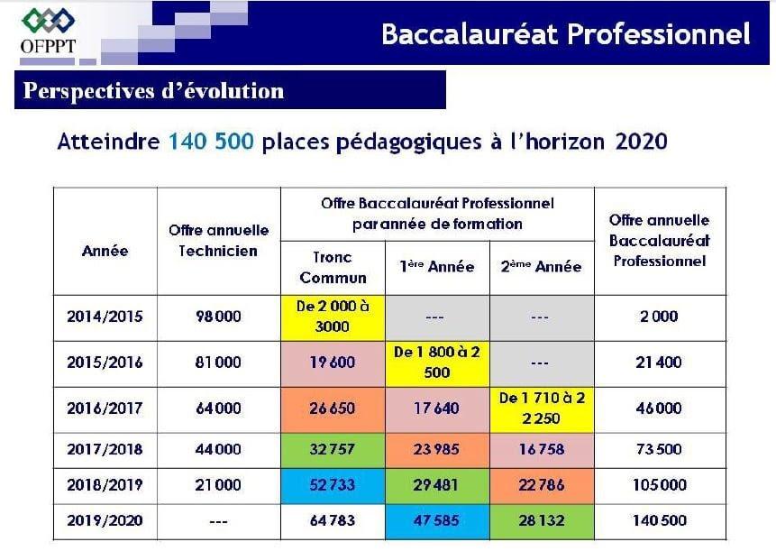 البكالوريا المهنية في مراكز التكوين المهني