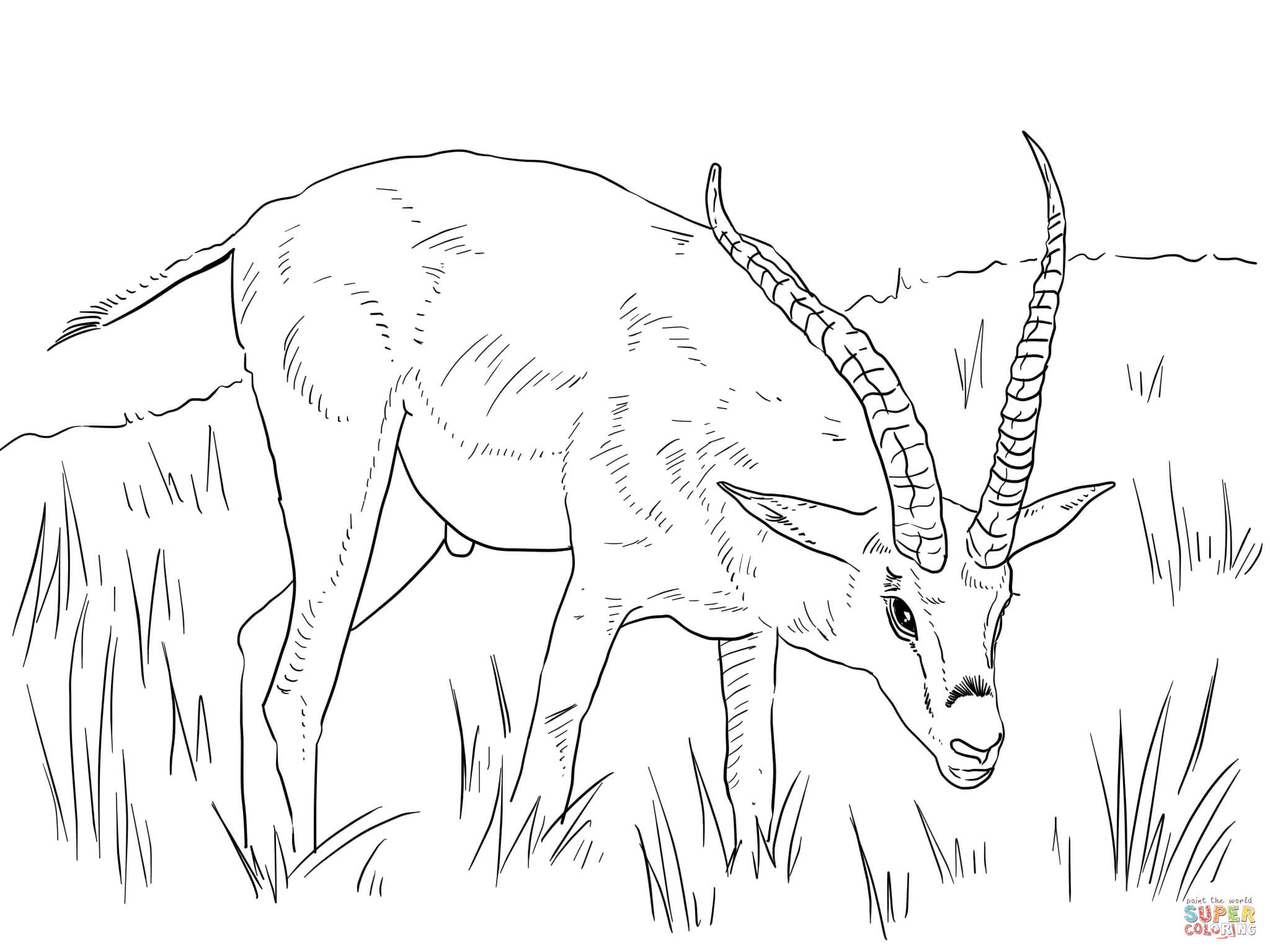 82 Top Coloring Pages African Animals Images & Pictures In HD