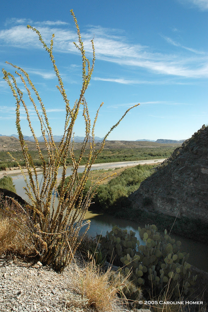 The Big Bend in the Rio Grande