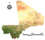 Thumbnail of Study sites for assessment of Lassa virus seroprevalence in humans, southern Mali, 2015. The 3 villages of Soromba, Banzana, and Bamba (within red square) in Sibirilia commune, Bougouni district, were selected on the basis of previous identification of Lassa virus–infected rodents in peridomestic settings.
