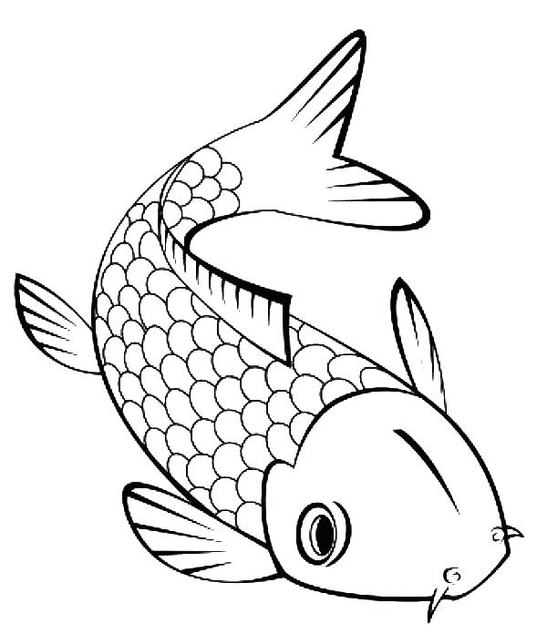 Cute Fish Outline  Free download best Cute Fish Outline on ClipArtMag.com