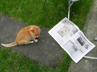 Ginga is unimpressed with his fame =)