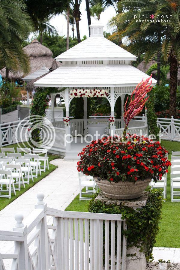 Miami Wedding Palms Hotel and Spa photo PinkPosh-SergioAnca-0012_zps2ec24cda.jpg