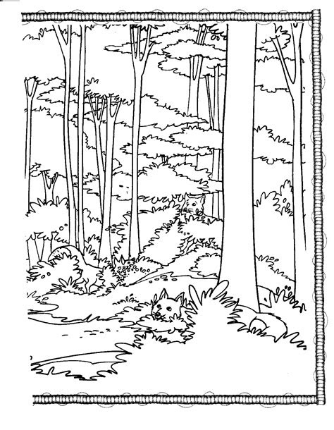 forest animal coloring pages bestofcoloringcom