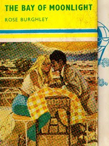 Cover of novel