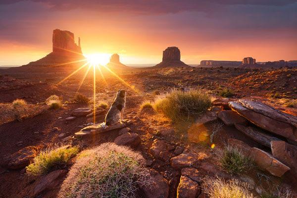 perierga.gr - Φωτογραφίζοντας τον ήλιο σε διάφορα σημεία του κόσμου!