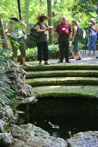 Hegi Garden pond