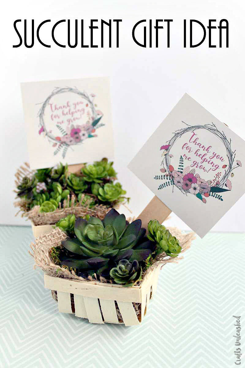 Consumer Crafts Succulent Gift Idea-Printable Supply List