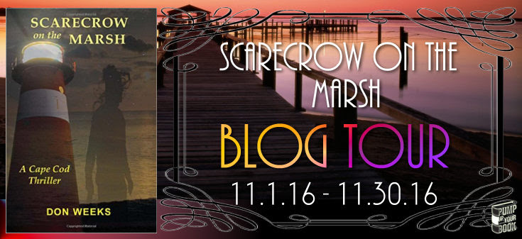 scarecrow-on-the-marsh-banner