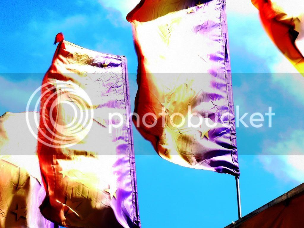 bright banners photo BrightBanners_zps79692989.jpg