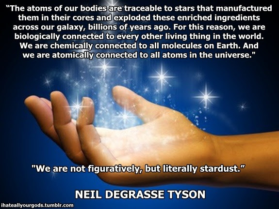 Neil Degrasse Tyson Quotes Stardust
