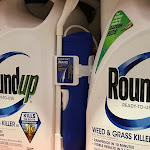 Roundup weed killer is major factor in man's cancer: Jury - Fox Business