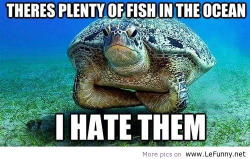 Theres Plenty Of Fish In The Sea Funny Quote Quotespicturescom