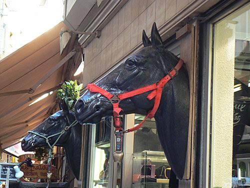 chevaux niçois.jpg