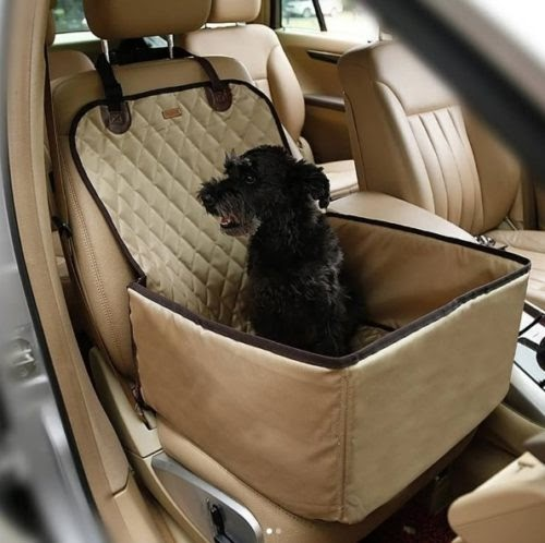 El peligro que se esconde en los asientos elevadores para llevar perros pequeños en el auto