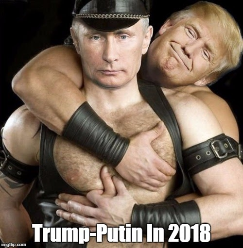 Image result for trump putin in 2020 pax on both houses