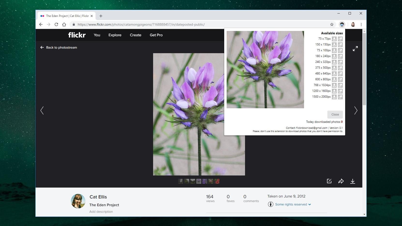 Flickr Photos Download