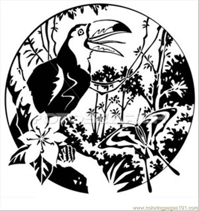 880 Top Rainforest Birds Coloring Pages Pictures