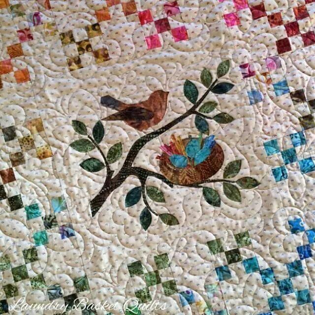 Rainbow Nest  xox