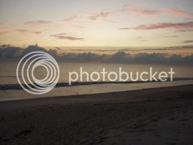 Vero Beach, Fl Sunrise picking of tumbled shells. and