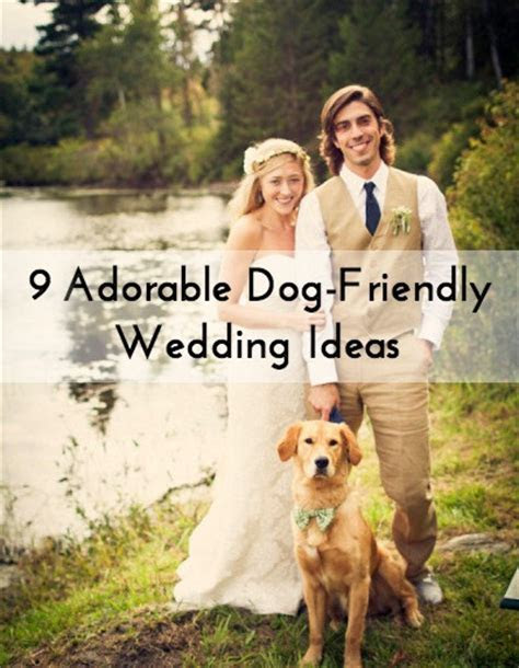 Adorable Dog Friendly Wedding Ideas   WeddingMix