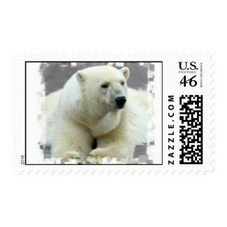 Polar Bear Postage Stamp