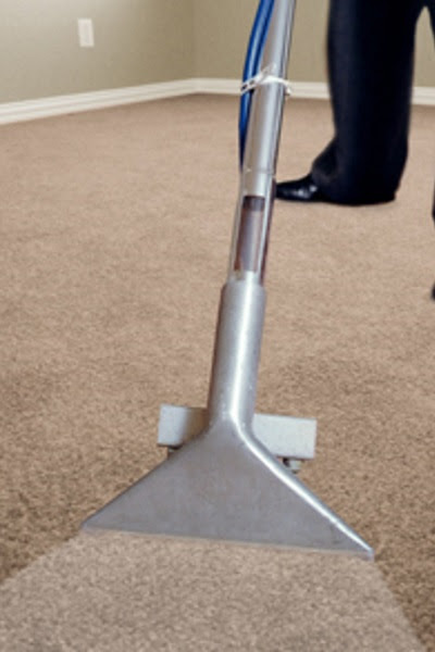 The Carpet Cleaner NZ  Cleaning the Wellington Region
