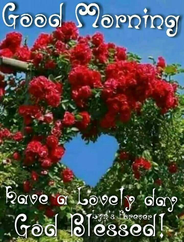 Good Morning Have A Lovely Day God Blessed Pictures Photos And