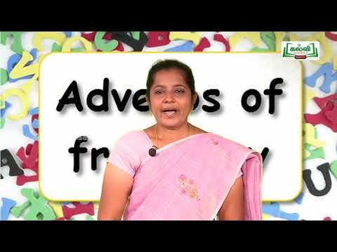 7th English Bridge course Orders of Adjectives and Adverbs Day 3 & 4 Kalvi TV