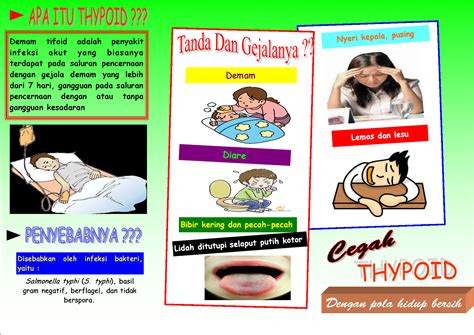 leaflet thypoid dedbol