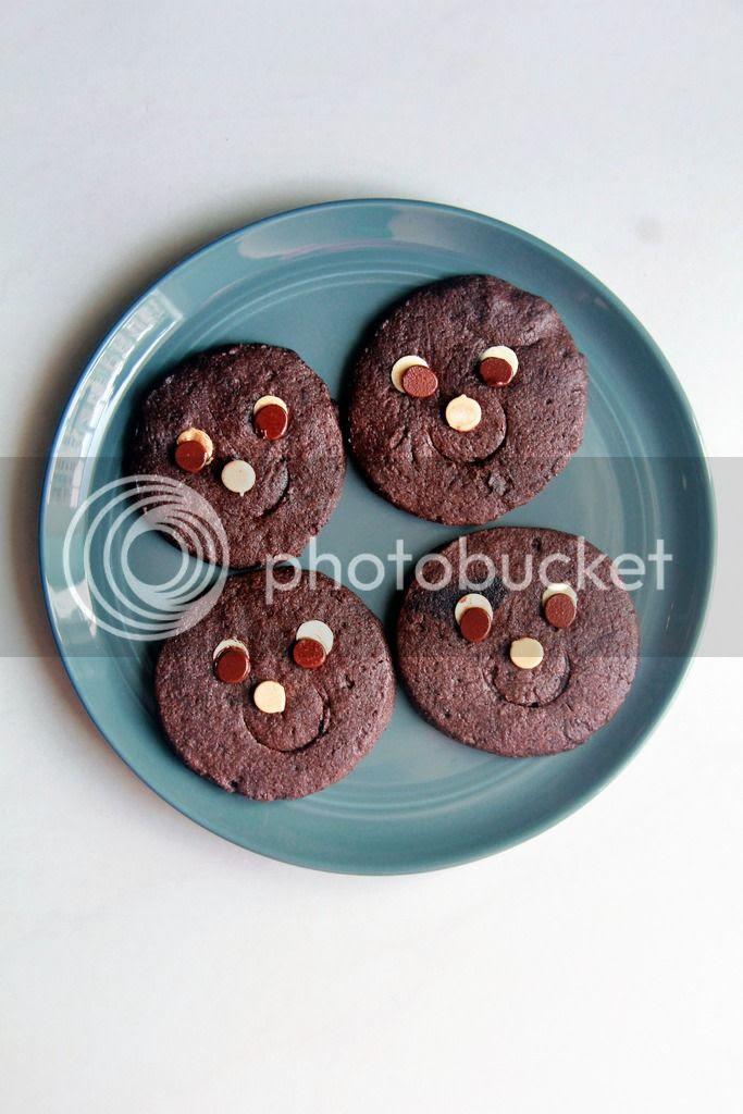 snack / dessert - kinako dark chocolate sugar cookies