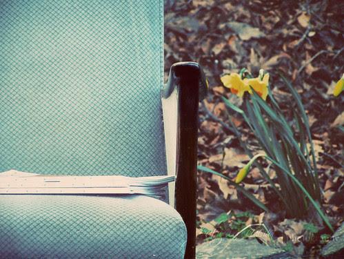 mañana  en el jardin