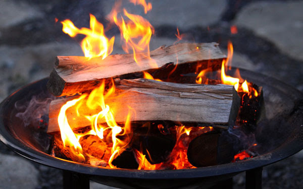 Image result for fall fire pit