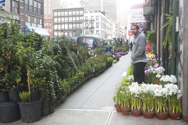 Flower District, nyc