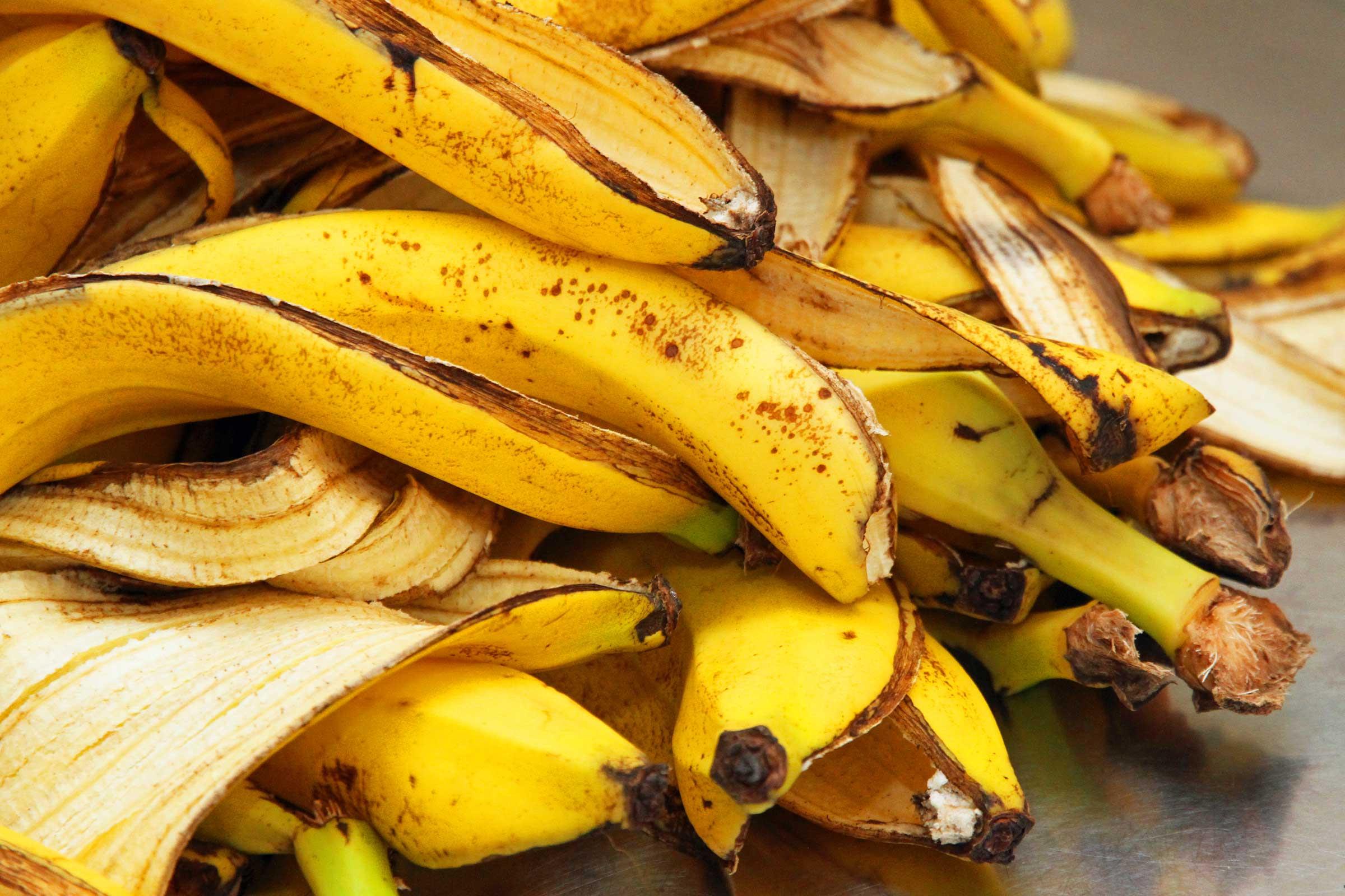 Benefícios da Casca de Banana para as Orquídeas que você Nem Imaginava.