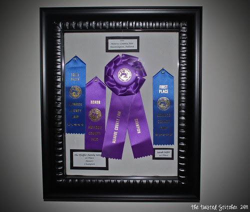 Shadow Box with 2011 Fair Ribbons