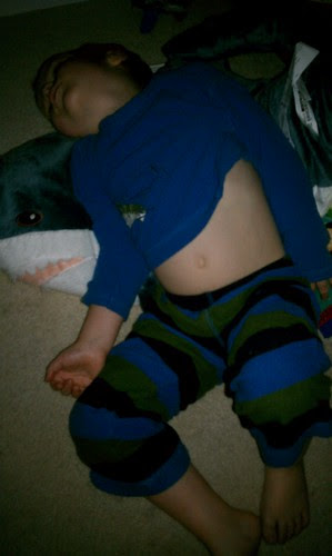 Sleeping Birthday Boy & Shark by aviva_hadas