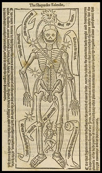 Anatomical Man with the Planets