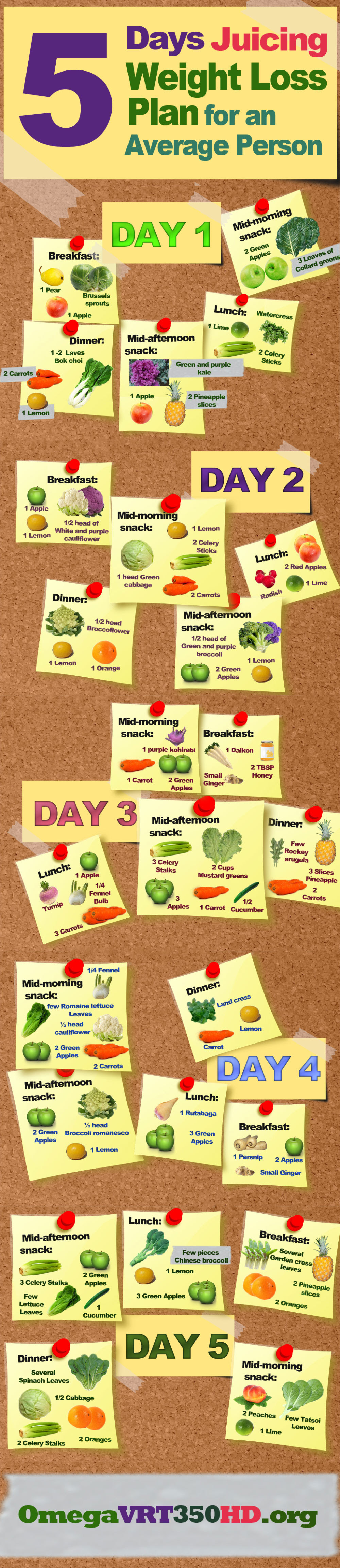 Infographic: 5 Days Juicing Weight Loss Plan for an Average Person