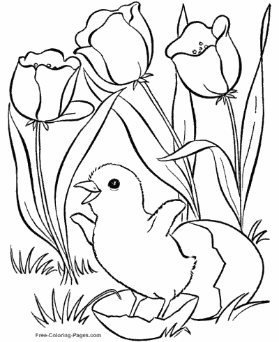Coloring Pages Kids: Springtime Coloring Sheets