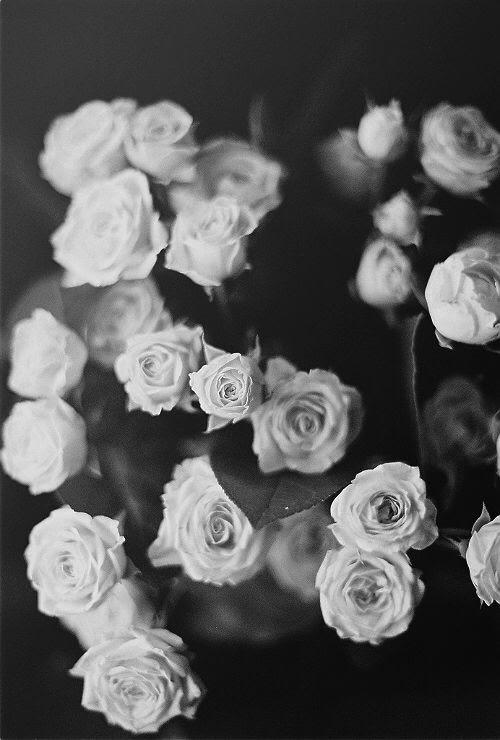 Unduh 100 Wallpaper Black White Pinterest HD