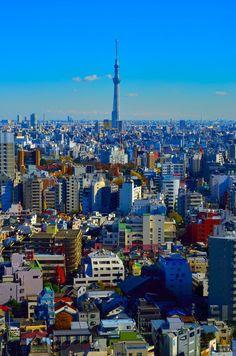 Tokyo, Japan by Kamal Zharif Kamaludin