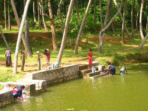 Thiruvathira: Thiruvathira Festival - Learn About Festivals in Kerala