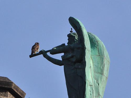 Isolde, Gabriel and the Mockingbird