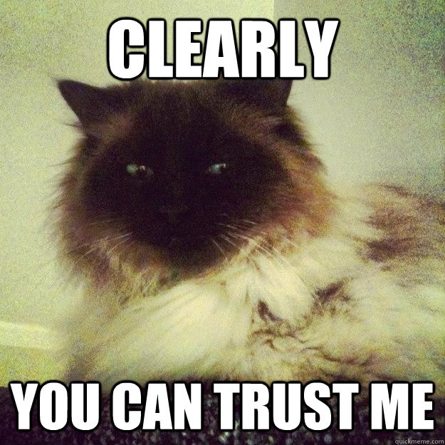 Clearly You Can Trust Me Sly Cat Quickmeme